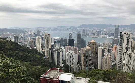 2021碳中和与中国纸业可持续发展论坛在北京召开